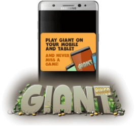 Mobile platform at Giant Bingo