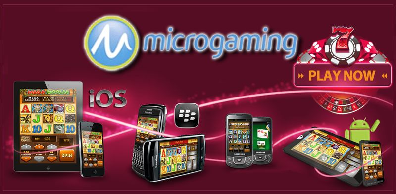 You should consider using the Microgaming mobile apps!
