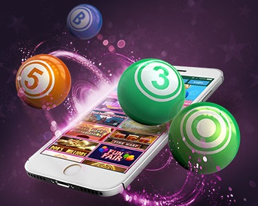 What are the bingo apps of the mobile platform at Paddy Power?