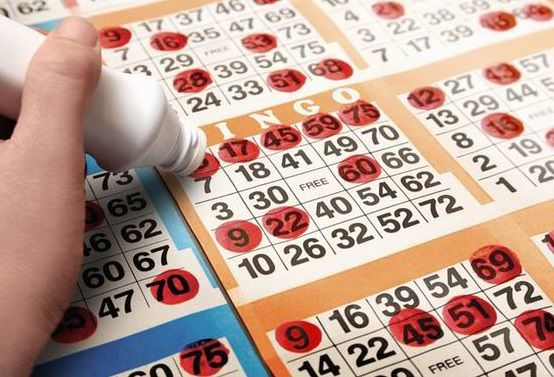 Check out the availability and ease of playing bingo!