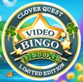 Video bingo combines the features of slots and bingo gaming!
